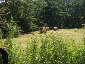 Baling hay in fields right next to TMI / AHSP